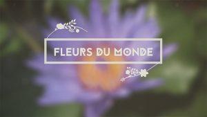 FleursMonde_743x418.jpg